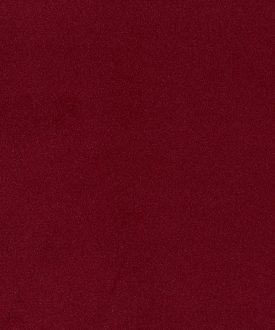 PLUSH- Burgundy-2108